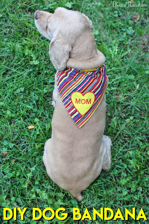 DIY Personalized Dog Bandana Sewing Tutorial - Looking for a gift for a dog lover? It's this DIY Embroidered Dog Collar Bandanna. This easy sewing tutorial includes a pattern for three sizes plus step by step instructions to create a one of a kind gift for your pet or pet loving friends. #ad #dog #DIY