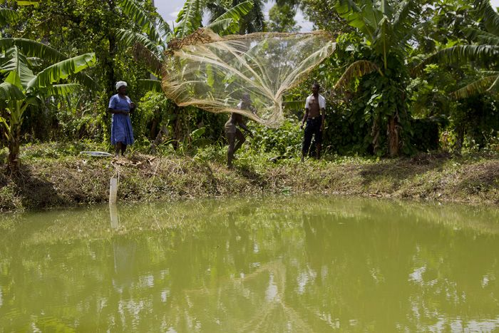 New Fishing, Agricultural Development Project in Haiti