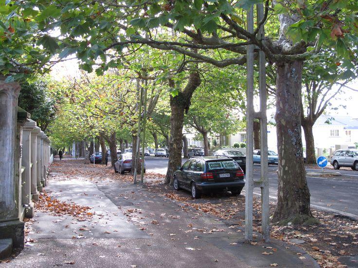 Ponsonby Road in Ponsonby, Auckland