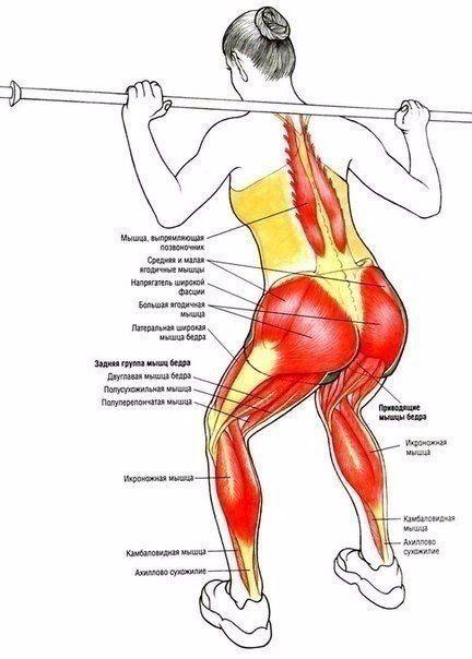 Workout   Будь в форме