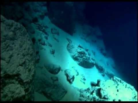 Impactante Documental BBC El Abismo en el Fondo del Mar - YouTube