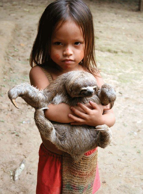 "Aboriginal and Tribal Nation News...  ""Can we keep him, please?!?! I will feed him and walk him everyday, promise."""
