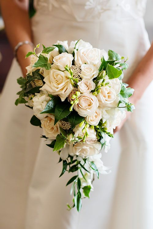 A cascading wedding bouquet of roses, white freesia, Italian ruscus, white…