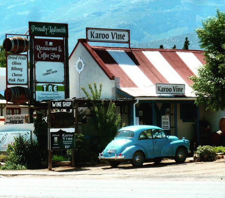 Karoo Vine in Ladismith, South Africa
