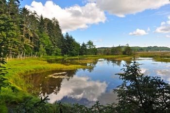 The Delkatla Wildlife Sanctuary Village Of Masset - Blog - Go Haida Gwaii