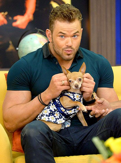 Kellan Lutz cuddled an extremely well-dressed chihuahua during an appearance on Univision's Despierta America in Miami.