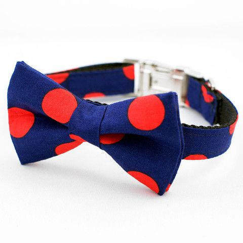 Feeling Spotty - Bow Tie Collar