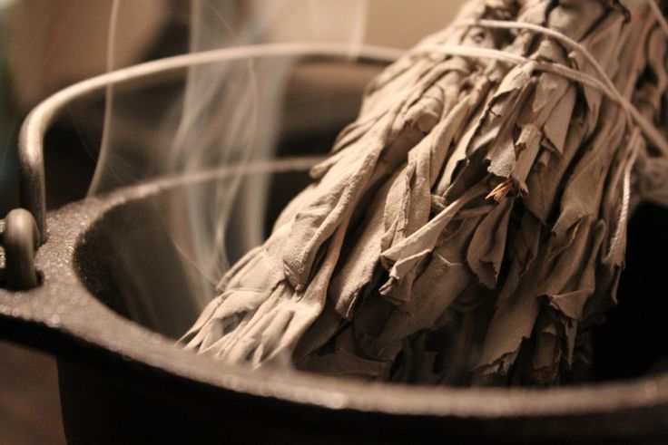The Science of Smudging: How Sage Actually Cleans Bacteria In The Air | Spirit Science