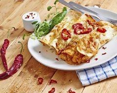 Enchiladas de crêpes au poulet et poivrons : http://www.cuisineaz.com/recettes/enchiladas-de-crepes-au-poulet-et-poivrons-66428.aspx