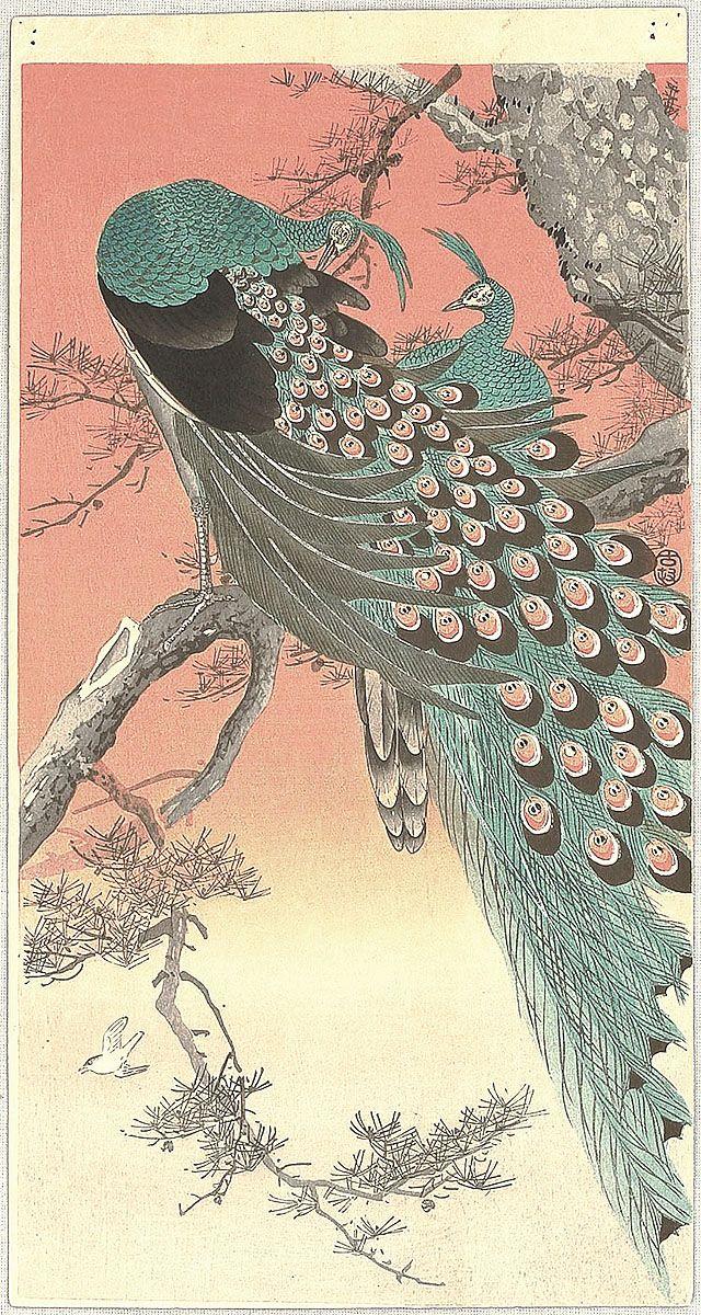 Ohara Koson: Peafowls - ca 1910