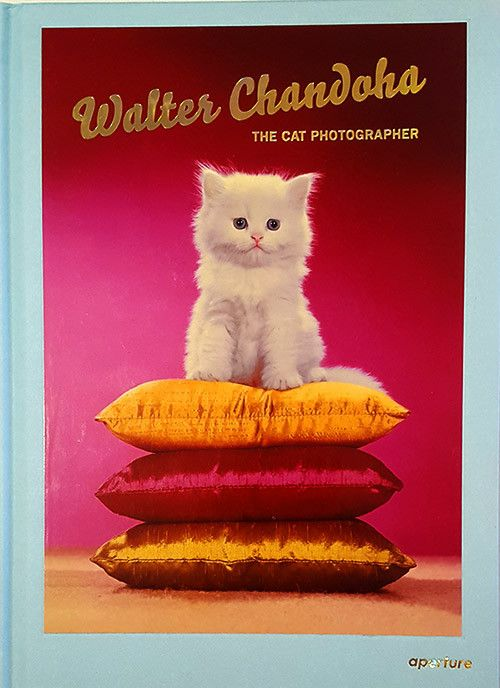 Within the genre of commercial animal photography, Walter Chandoha is a master. His photographs of cats in particular have appeared in the pages of National Geographic and Life magazine, as well as be