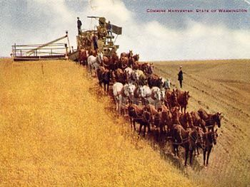 horse drawn cotton equipment | vo hammon publishing company combine harvester state of washington