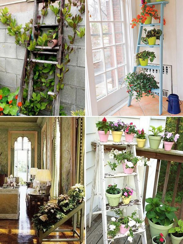24 best images about plant stands ladder on pinterest for Ladder house decor