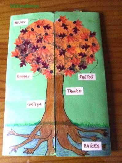 lapbook los árboles
