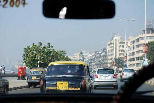 Prendre la route en Inde est une expérience à laquelle aucun étranger ne peut être préparé. Routes cabossées, permis de conduire inexistant et véhicules à quatre pattes l'expliquent en partie.