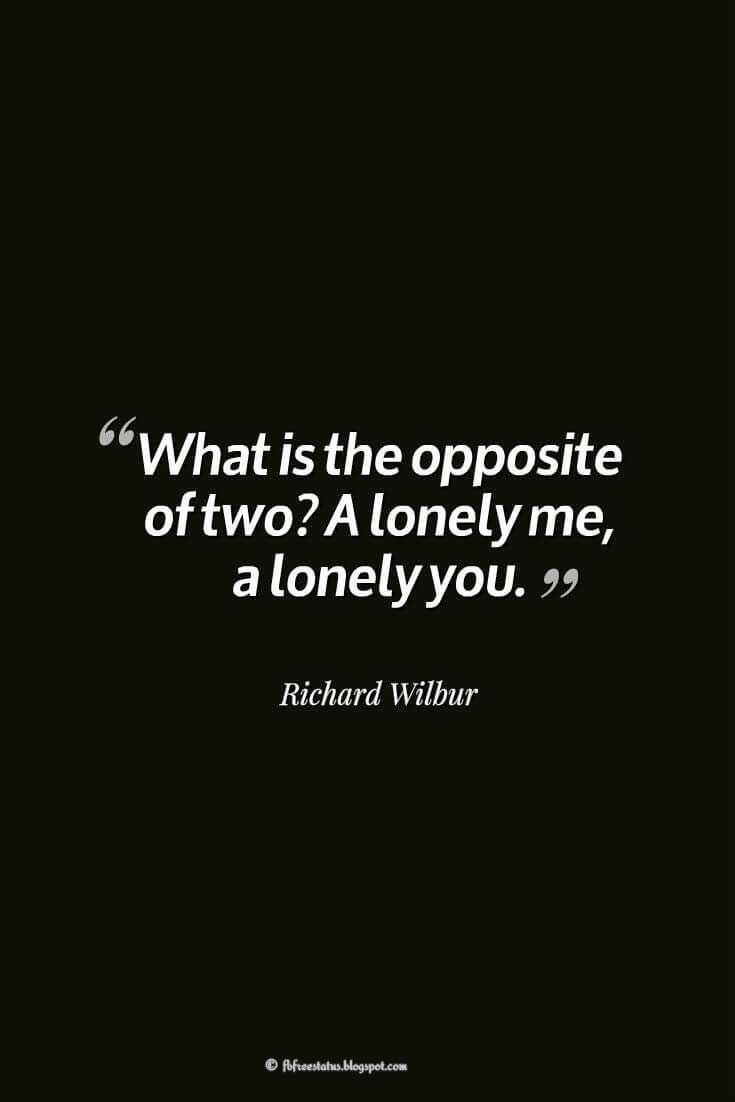 What is the opposite of two? A lonely me, a lonely you. ― Richard Wilbur, quotes about heartbroken