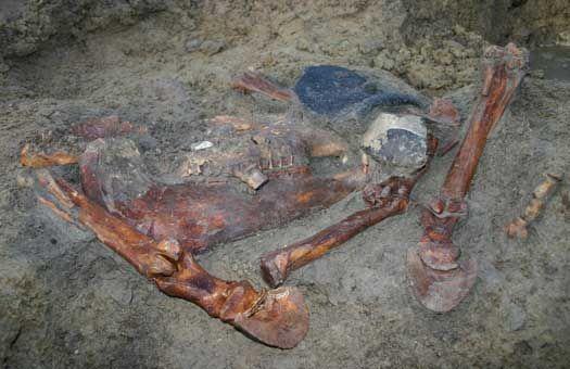 Spiste man heste i oldtiden? Ja, fund af marvspaltede hesteknogler på bopladser fra både sten-, bronze- og jernalder viser, at man spiste heste.  Det var først med kristendommens indførelse, at det blev forbudt at spise hestekød. Hestene tjente dog også andre formål end at levere hestebøffer.  Helleristninger fra bronzealderen viser stridsvogne trukket af heste, og man har fund af lette vogne fra bronzealderens slutning, der også viser, at hestene sandsynligvis først og fremmest var et…
