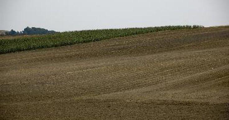 ¿Qué es la saturación de bases en los suelos?. La base de saturación es la cantidad de iones cargados positivamente, con exclusión de iones de hidrógeno y aluminio, que son absorbidos en la superficie de las partículas del suelo y se mide y es expresada como un porcentaje. La saturación de bases se relaciona positivamente con el pH del suelo debido a que un valor de saturación de bases alta ...