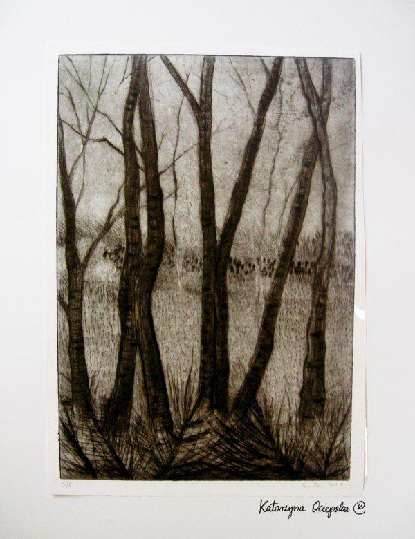 Las (The Forest), sucha igła, 2006 #suchaigla #drypoint #print #printing #druk #drukowanie #uljado