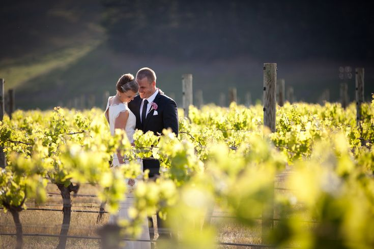 Hawkes bay. weddings at te awa winery