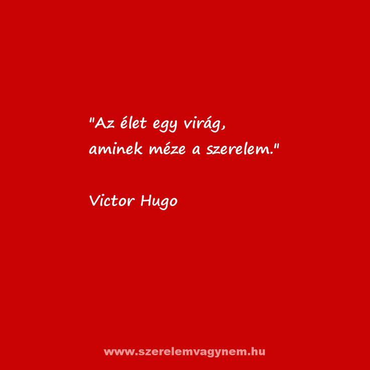 Victor Hugo szerelmes idézet