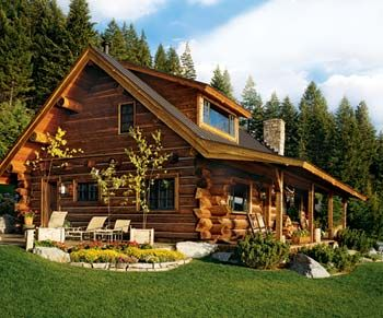 small log home, love the sloping roof
