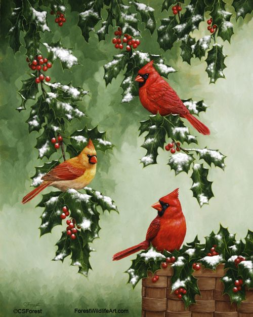 Pin by Crista Forest Wildlife Art on My Animal Art ...