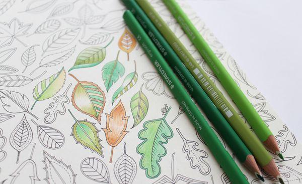 Art Materials Colouring Pencils Etc