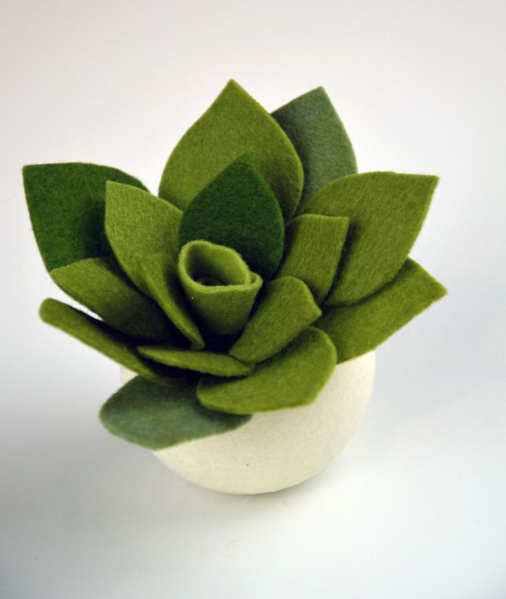 In our Craft Genius HP1 Felt Succulents project kit, you'll make three adorable and unique felt succulents. Quick and easy, this kit is perfect for any crafter comfortable with using a glue gun and a