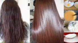 Solutions Efficaces et économiques : Ayez les cheveux plus lisses et soyeux Naturellement avec ces 3 traitements naturels !