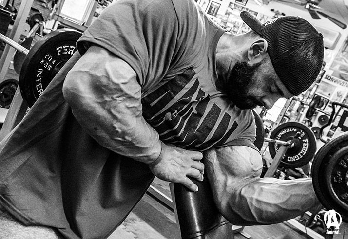 The Guns Of Wrath: Frank McGrath's Biceps And Forearms ...