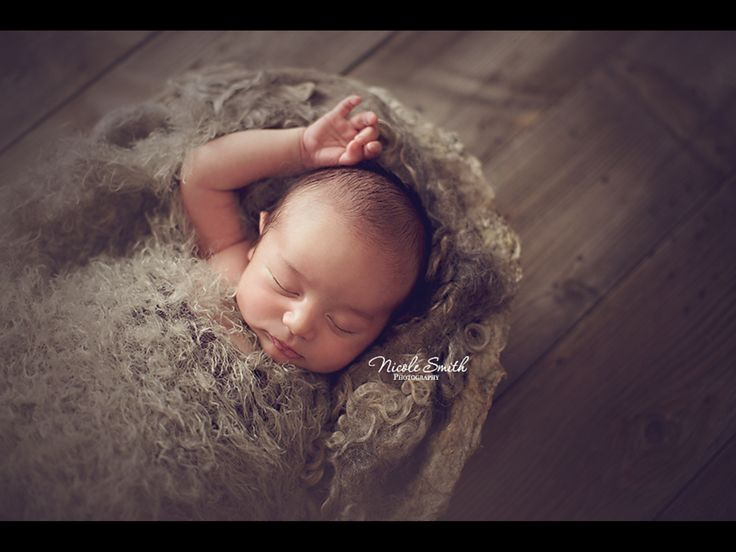 Newborn photography prop vessel as used by nicole smith photography