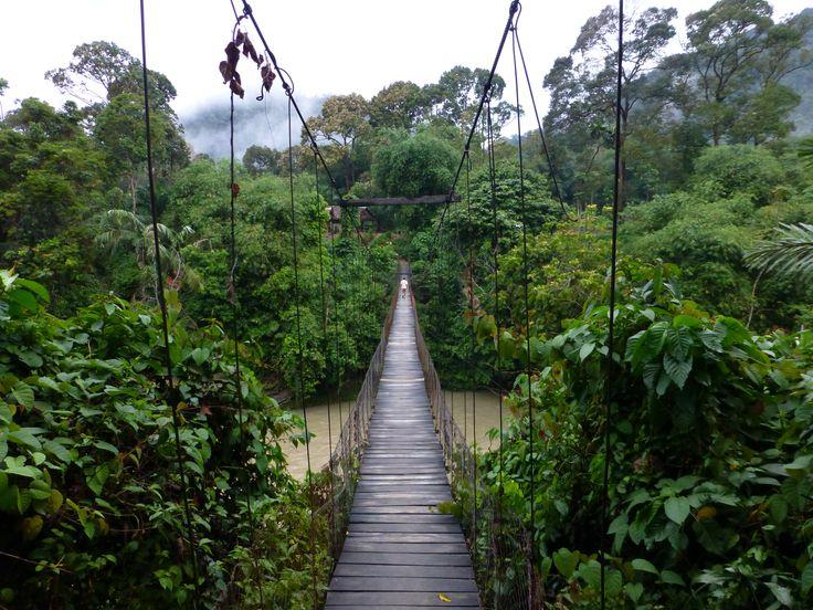 Een hangbrug op #Sumatra, #Indonesië! Wij houden van dit onaangetaste eiland! #travelsmartnl