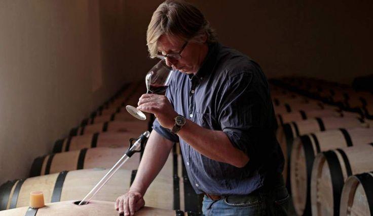 El vino 'Pingus', un vikingo en la Ribera del Duero | 20minutos.es