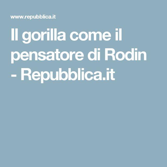 Il gorilla come il pensatore di Rodin - Repubblica.it