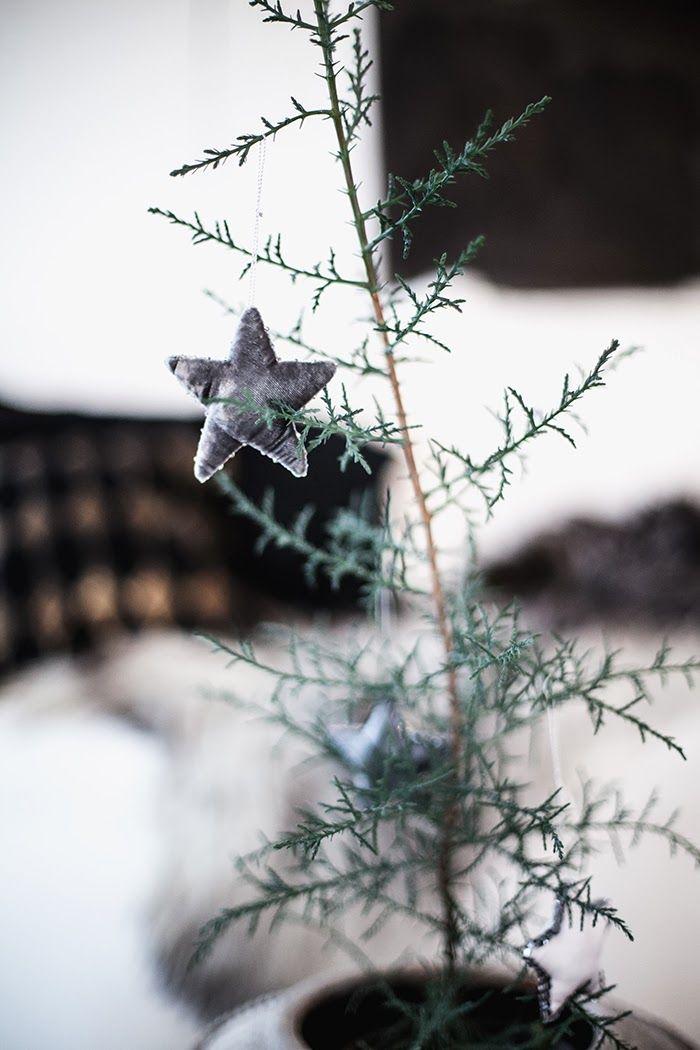 Christmas | Xmas | Jul | Noël. Natural Decoration. Tree. Star.