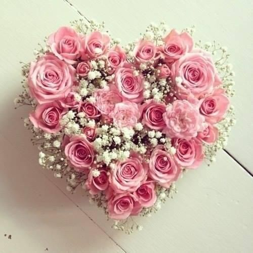 Cute for Valentines