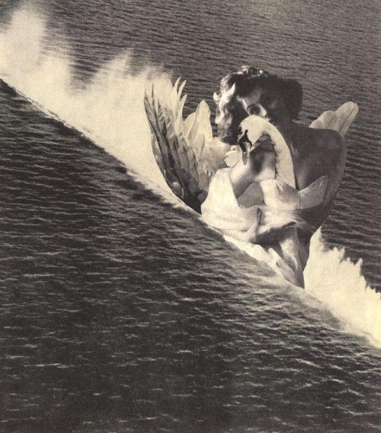 """「海のレダ」(1951年)水上スキーの写真に羽の写真を貼り付け、次に羽に合う白鳥の写真素材を探して貼り付けたという。羽の素材と白鳥の素材がピッタリ一致したときの""""偶然性""""に岡上は満足。これがシュルレアリスムである。"""