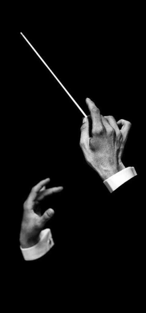 The mesmerizing hands of a conductor.