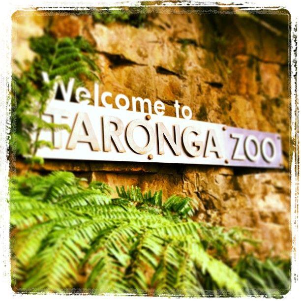 Taronga Zoo itt: Mosman, NSW