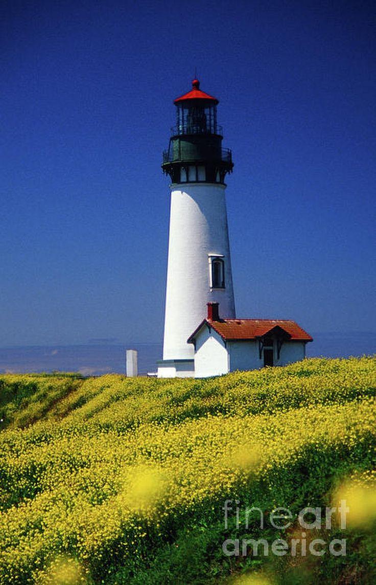 Yaquina Head Lighthouse By Rick Bures
