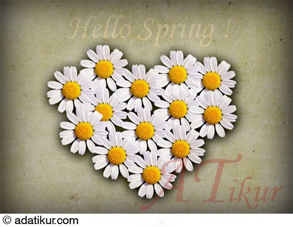 Foto-ilustración de adatikur.com. Corazón de margaritas. Hello Spring. Amor.