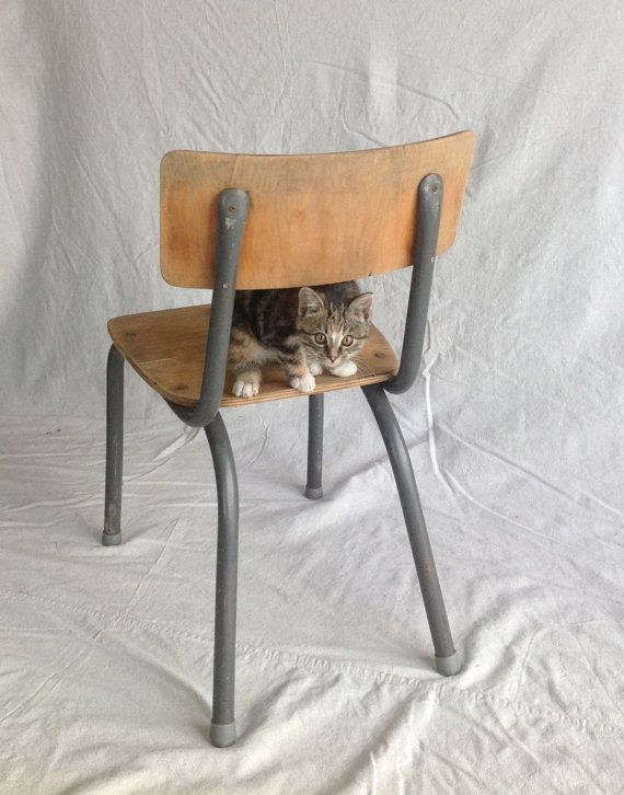 13 inch seat height...Midcentury school chairs / wooden seat and back / 60's or