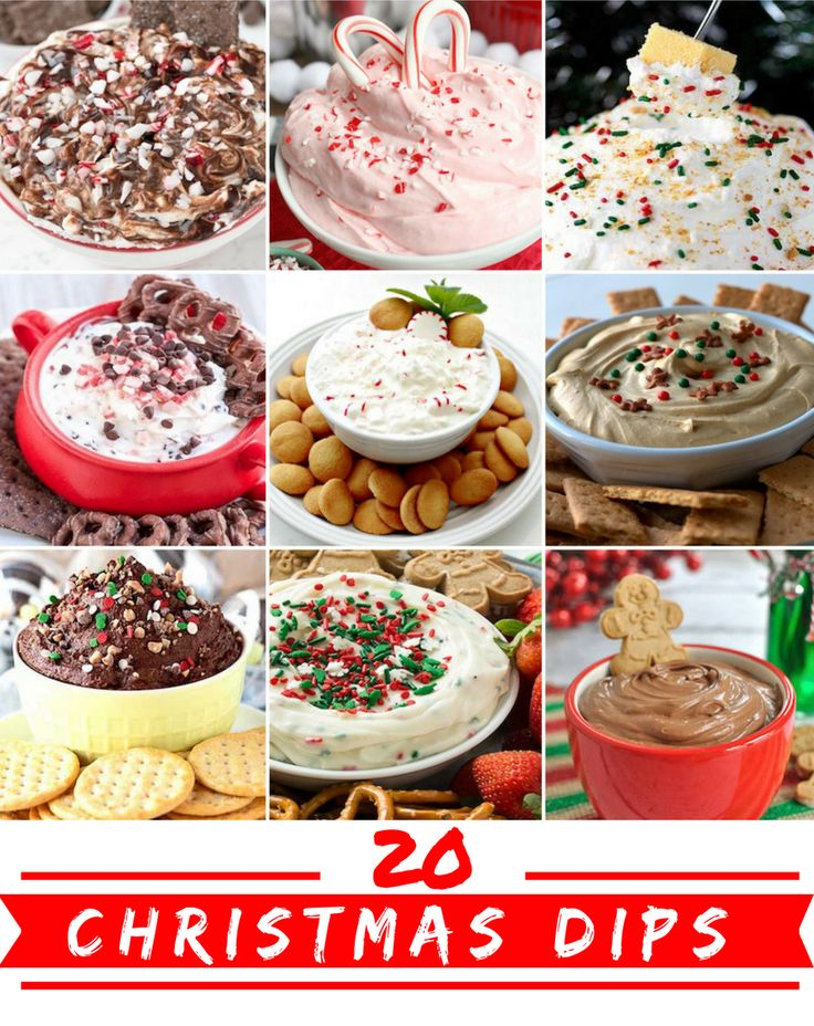 20 Christmas Party Dips