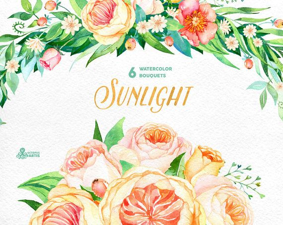 Sunlight: 6 Watercolor Bouquets, popies, roses, floral wedding invitation, greeting card, diy clip art, flowers, sunny, quote clipart