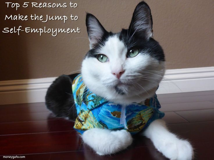 Top 5 Reasons to Make the Jump to Self-Employment