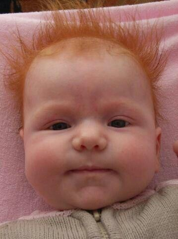 This is the most ginger baby I have ever seen. And therefore the most adorable.