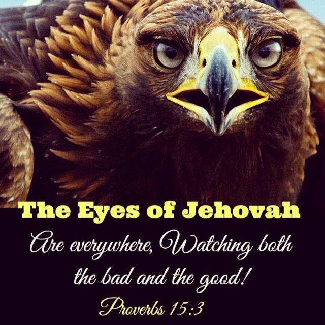 Jehovah sees all.