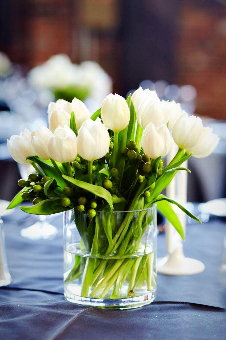 фото с белыми тюльпанами предъявляются