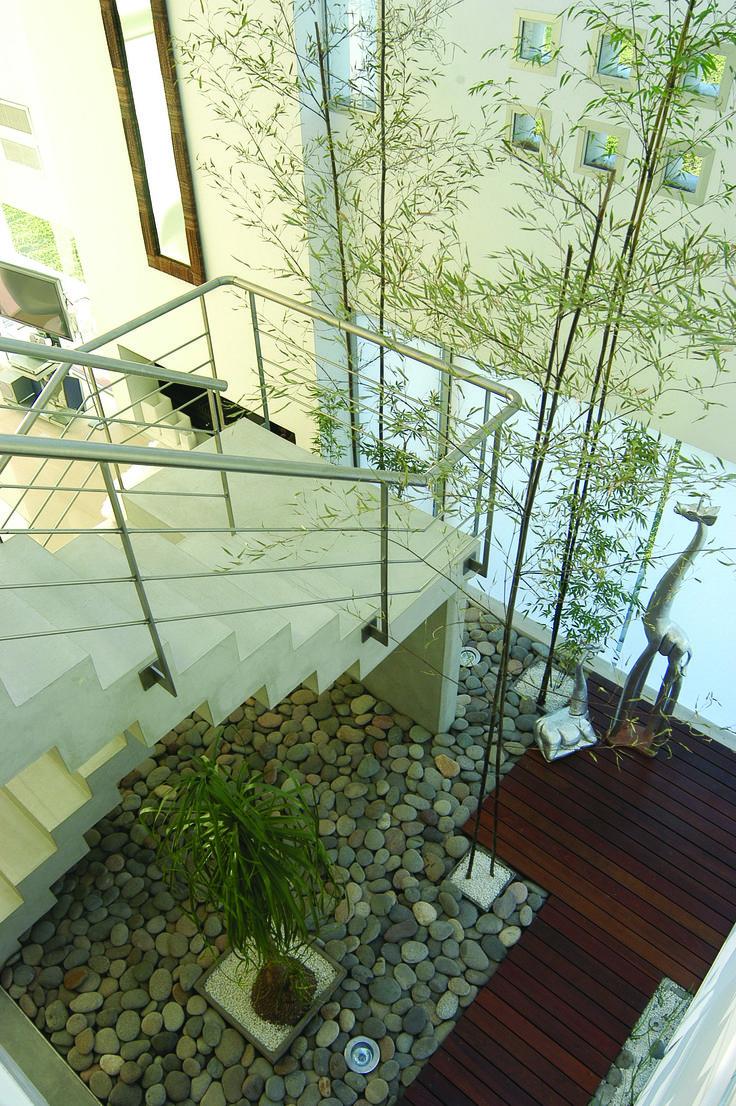 Casa Castores  #Patios Internos  #Casas #Arquitectura #Architecture